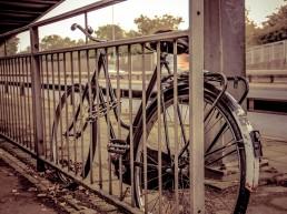 Vintage Bicycle techloto